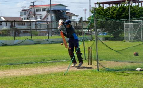 Tagenarine In The Nets, 2013